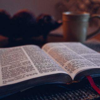http://feltabonline.org/wp-content/uploads/2018/02/WWOW-Bible-study-320x320.jpg